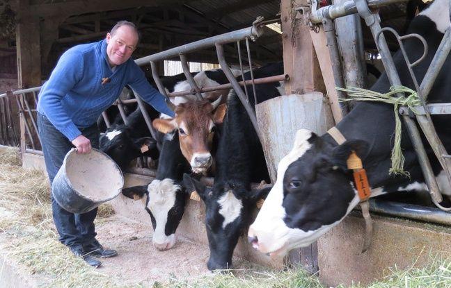 Yves de Fromentel, 56 ans, agriculteur biologique installé à Pécy (Seine-et-Marne).
