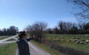 Une militante écologiste montre l'emplacement du projet de contournement autoroutier d'Arles.