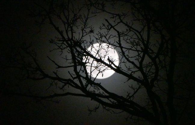 50 ans de l'homme sur la Lune: La Lune a-t-elle vraiment des effets sur notre humeur?