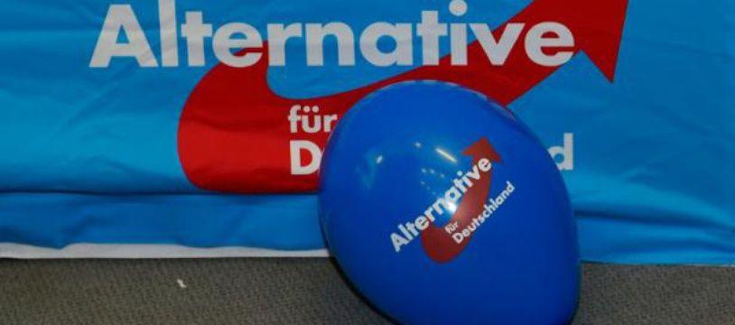 Le parti populiste allemand AfD.