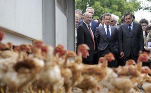 Dans ses mémoires, Obama dit que  Sarkozy bombe le torse comme un petit coq.