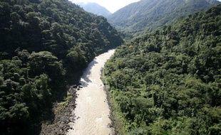 La forêt tropicale au Costa Rica.