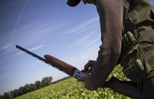 Ariège: Un chasseur de 77 ans en abat un autre lors d'une battue aux sangliers