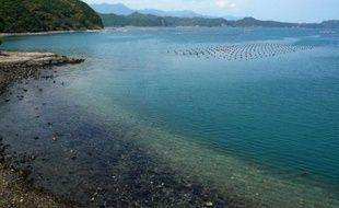 La ville japonaise de Taiji, tristement connue dans le monde pour ses massacres de dauphins, compte ouvrir un parc marin où les gens pourront nager avec des dauphins et des petites baleines. Mais la tuerie, qui tous les ans transforme les eaux du port en une mer de sang, va malgré tout continuer.