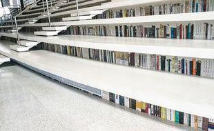 Illustration bibliothèque.