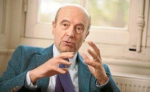 Bordeaux, 8 fevrier 2013. - Alain Juppe, maire de Bordeaux, dans son bureau. - Photo : Sebastien Ortola