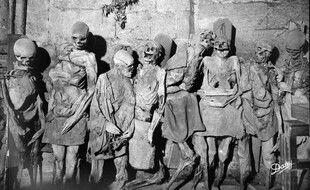 Le mystère des momies de la tour Saint-Michel 310x190_momies-trouvees-sous-fleche-saint-michel-exposees-crypte-pendant-pres-200-ans