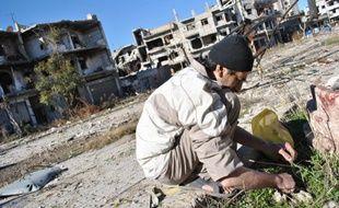 Un Syrien cueille des herbes pour nourrir sa famille à Homs le 1er février 2014.