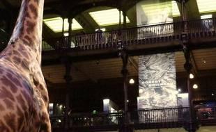 Exposition Doisneau à la Grande galerie de l'évolution, octobre 2015.