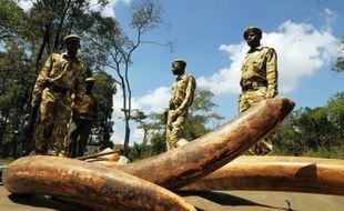 Des rangers kényans près de défenses d'éléphant, le 30 novembre 2009