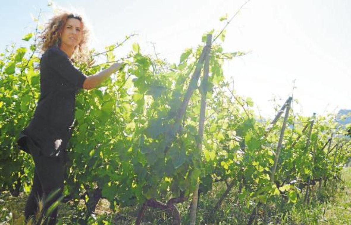Carine Dalmasso vient de convertir ses vignes au bio, après quatre ans de travail. –  M. FRENOIS / ANP / 20 MINUTES