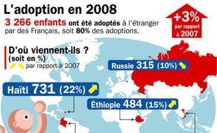Les chiffres des adoptions internationales en France en 2008.