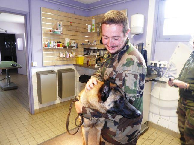 Visite de courtoisie pour un malinois et son maître chez la vétérinaire du CNICG.