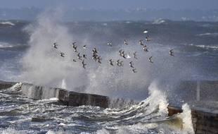 La tempête Eleanor arrive par le nord-est du pays