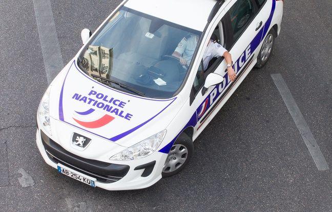 Marseille: Un homme interpellé après un «déchaînement de violence» sur son chien