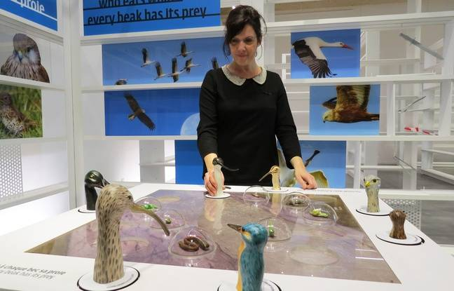 Yasmine Mamma, directrice de Terre d'estuaire.