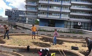 Un projet d'agriculture urbaine sur les terrasses suspendues de Mériadeck.