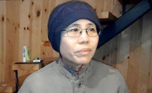 Liu Xia, le 31 décembre 2012 à Pékin.