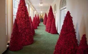 Les sapins de la Maison Blanche pour le Noël 2018.