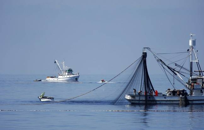 Espagne: Le corps d'un marin retrouvé après la disparition d'un bateau de pêche dans les eaux marocaines