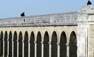 Un homme de 42 ans, mécontent des conditions de garde d'enfant fixées dans le cadre de son divorce, s'est réfugié mercredi pendant 2H30 à 18 m de hauteur sur un monument de Montpellier, demandant à être reçu par le juge aux affaires familiales, a-t-on appris auprès de la police.