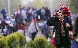 Des migrants le long de la frontière entre la Hongrie et la Croatie le 16 octobre 2015.