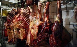 Des carcasses de chevaux.