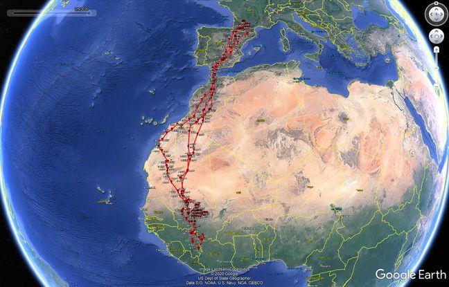 Depuis mai 2019, Tille, le milan noir suivi par balise, a effectué deux migrations vers l'Afrique.