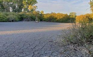 Illustration de la sécheresse dans le Nord.