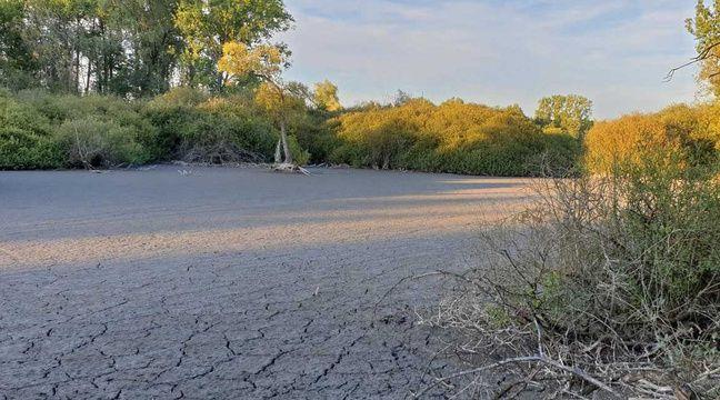 La manque d'eau se fait déjà sentir dans le Nord