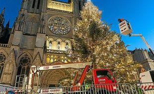 Le grand sapin de la place Pey-Berland fera pace à des illuminations sur la cathédrale
