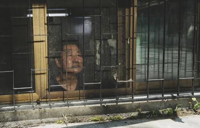 De la Corée à la France, le succès infectieux de «Parasite», la Palme d'Or 2019