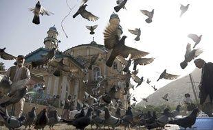 Pigeons devant la mosquée Shah-Do Shamshira de Kaboul (Afghanistan) le 5 juin 2018
