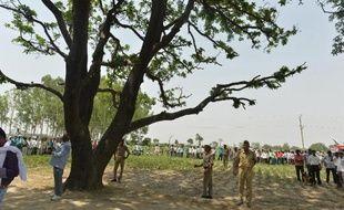 La police indienne garde l'arbre où étaient suspendus les corps de deux jeunes filles de 14 et 15 ans violées et pendues dans l'Etat d'Uttar Pradesh le 31 mai 2014