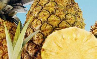Des ananas (Illustration).