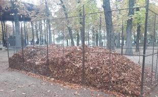 Les cages à feuilles mortes dans le jardin du Luxembourg