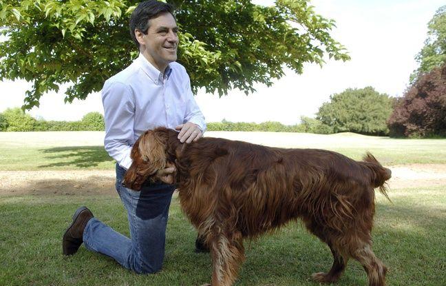 François Fillon et son chien.