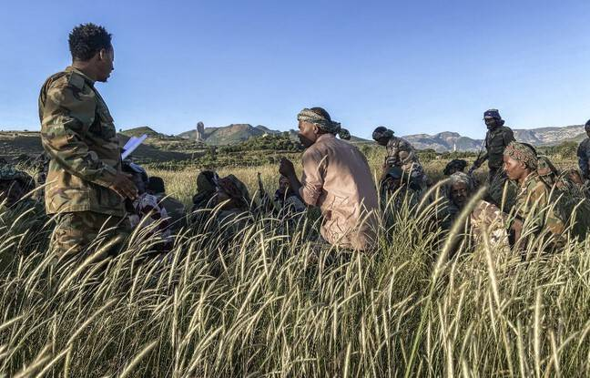 648x415 soldats ethiopiens pres region separatiste tigre
