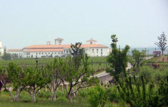L'Association chinoise de l'industrie des boissons alcoolisées a demandé au gouvernement d'enquêter sur les importations de vin en provenance d'Europe, estimant que les subventions européennes portaient préjudice aux producteurs nationaux, a rapporté lundi l'agence officielle Chine Nouvelle.