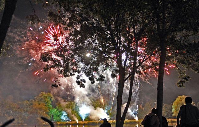 Le feu d'artifice de Vertou au parc du Loiry.