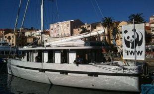 Le Colombus, bateau du WWF, dans le port de Calvi en Corse, fin octobre 2010.