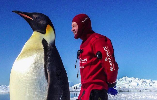 Laurent Ballesta, en Antarctique.