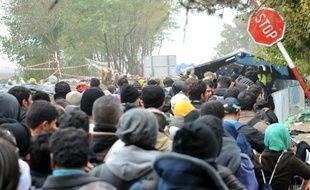 Des migrants et réfugiés traversent la frontière entre la Serbie et la Croatie, à Berkasovo, le 26 octobre 2015 en Serbie