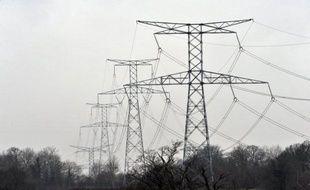 La construction de la ligne à très haute tension (THT) Cotentin-Maine, qui doit notamment acheminer l'électricité produite par le réacteur EPR en construction à Flamanville (Manche), a démarré, malgré des recours devant le Conseil d'Etat, a indiqué mardi RTE, filiale d'EDF.