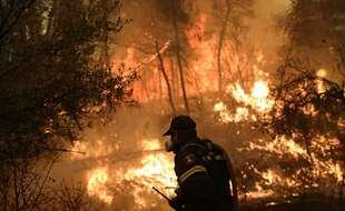 Un pompier lutte contre les flammes sur l'île d'Eubée.