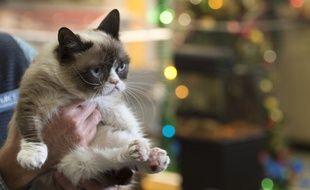 «Grumpy Cat's Worst Christmas Ever» sera diffusé sur Lifetime.