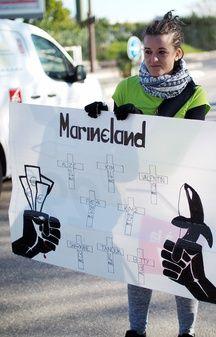 Une manifestante porte une pancarte faisant état des décès de cétacés constatés à Marineland