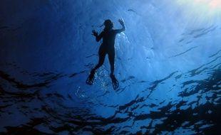 8.000 mètres cubes d'eau ont été nécessaires pour remplir la piscine.