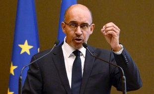 Harlem Désir le 16 novembre 2013 lors d'un discours devant le conseil national à Paris