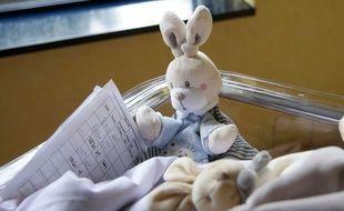Le doudou s'est imposé comme un cadeau de naissance et en ce moment, c'est le lapin qui a la cote.